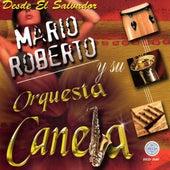 Desde el Salvador by Mario Roberto Y Su Orquesta Canela