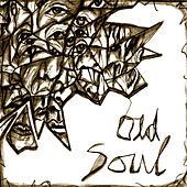 Sounds Before the Silence by The Old Soul