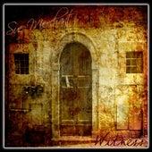 Witness by Sue Merchant