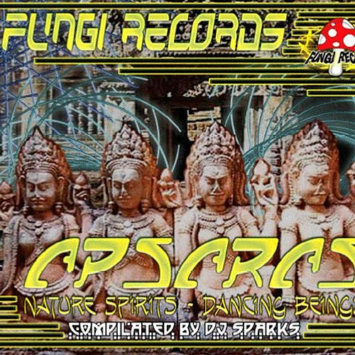 Apsaras by Various Artists