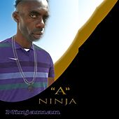 A Ninja - Single by Ninjaman