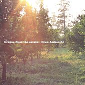 Grapes from the Estate by Oren Ambarchi