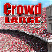 Crowd - Large: Sound Effects by Sound Effects Library