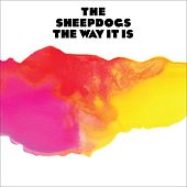The Way It Is by The Sheepdogs