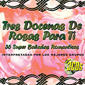 Super Baladas Romanticas by Various Artists