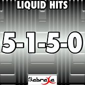 5-1-5-0 (Remake Tribute to Dierks Bentley) by Liquid Hits