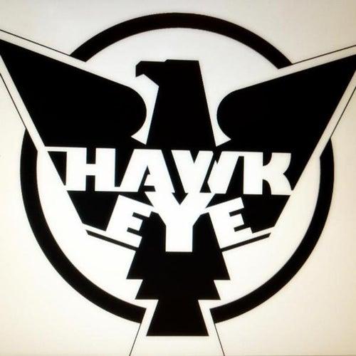 Hawkeye by Hawkeye