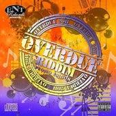 Overdue Riddim von Various Artists