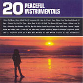 20 Peaceful Instrumentals by Christopher Davis