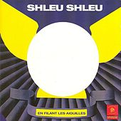 En filant les aiguilles by Shleu Shleu