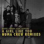 A Girl Like You (Numa Crew Remix) by Daddy Freddy