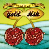 Perceptions Of Pacha by Goldfish