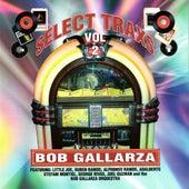 Select Trax Vol. II [Bob Gallarza Presents] by Various Artists