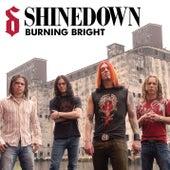Burning Bright von Shinedown