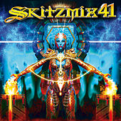 Skitzmix 41 by Various Artists
