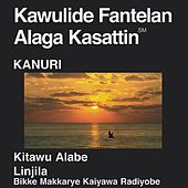 Kanuri Central New Testament (Dramatized) by The Bible