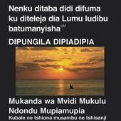 Tshiluba du Nouveau Testament (Dramatisé) - Tshiluba Bible by The Bible