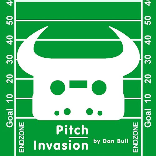 Pitch Invasion by Dan Bull