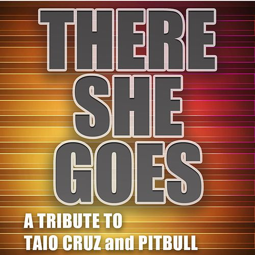 There She Goes (Originally Performed By Taio Cruz and Pitbull) by Big Hitters 2012