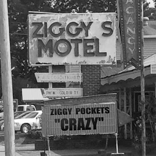 Crazy by Ziggy Pockets