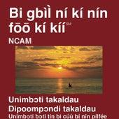 Bassar Ntcham du Nouveau Testament (Dramatisé) - Bassar Ntcham Bible by The Bible