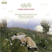 Orchestral Music - Bach, J.S. / Mozart, W.A. / Beethoven, L. Van / Sibelius, J. / Raitio, V. (Idyll - Music for Daydreaming) von Various Artists