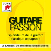 Guitare Passion von Julian Bream