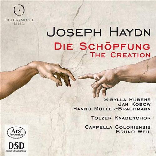 Haydn: Die Schöpfung (The Creation) by Sibylla Rubens