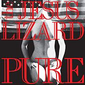 Pure by The Jesus Lizard