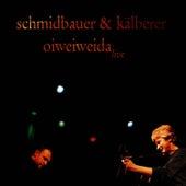 Oiweiweida by Schmidbauer
