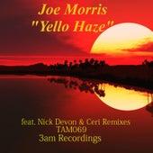 Yello Haze by Joe Morris