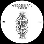 Monad XI by Kangding Ray