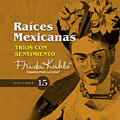 Trios Con Sentimiento (Raices Mexicanas Vol. 15) by Various Artists