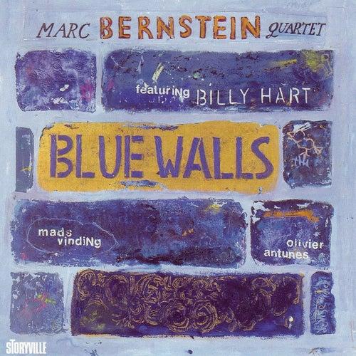 Blue Walls by Billy Hart