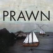 Ships by Prawn