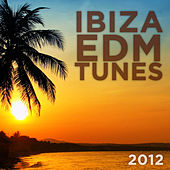 Ibiza EDM Tunes 2012 by Various Artists