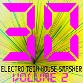 30 Electro Tech House Smasher Vol. 2 by Various Artists