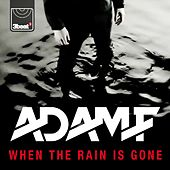 When the Rain Is Gone by Adam F