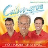 Für immer und ewig by Calimeros