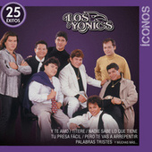 Íconos 25 Éxitos by Los Yonics