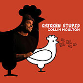 Chicken Stupid by Collin Moulton