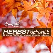 Napster pres. Herbstgefühle - 30 Lounge Titel für die ruhigeren Momente im Leben by Various Artists