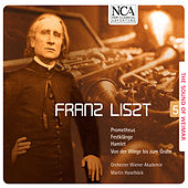 Liszt: The Sound of Weimar 5 by Vienna Academy Orchestra
