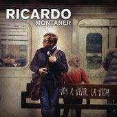Voy A Vivir La Vida by Ricardo Montaner