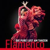 Die pure Lust am Tanzen Flamenco by Carlos Montoya