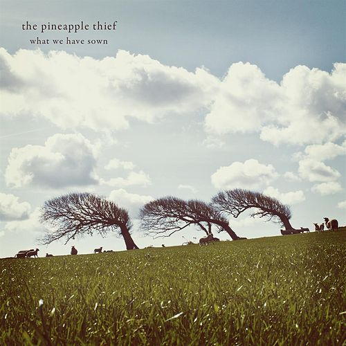 What We Have Sown (2012 remastered reissue) by Pineapple Thief