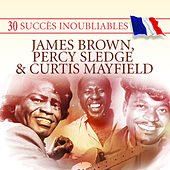 30 Succès inoubliables : James Brown, Percy Sledge & Curtis Mayfield von Various Artists