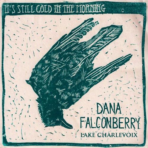 Lake Charlevoix by Dana Falconberry
