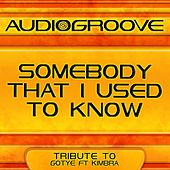 Somebody That I Used to Know by Audio Groove