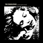 Your Pure Soul von Charlatans U.K.